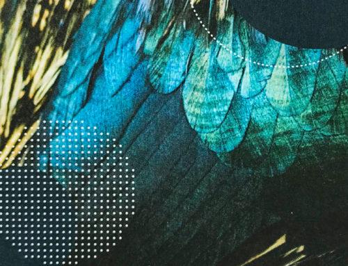 BLEU ACAPULCO für 2019